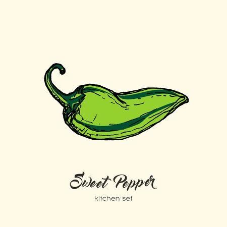 Green pepper vector isolate. Hand drawn illustration sweet bulgarian bell paprika capsicum chili hot pepper. Illustration