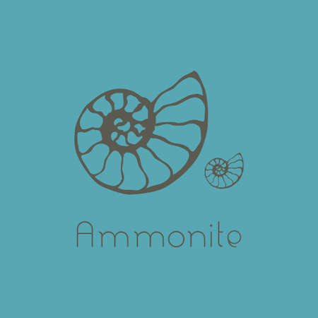 Fossil ammonia nautilus seashell icon set. Isolated design of seashells, ancient ammonia fossil icon, card. Hand drawn illustration spa salon, seafood cafe, restaurant, corporate identity.