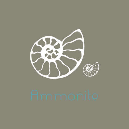Fossil ammonite nautilus seashell icon. Hand drawn illustration for spa salon, seafood cafe, restaurant, corporate identity.