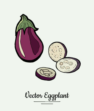 Eggplant vegetable groceries vintage set. Hand drawn isolated fresh aubergine. Food line hand drawn illustration. Eggplant vegetarian poster, restaurant menu, icon, sticker.