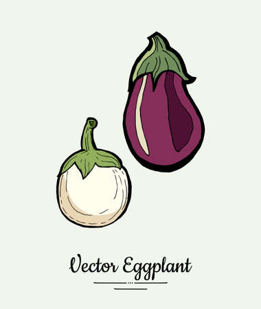 Eggplant vegetable groceries vintage set. Hand drawn isolated fresh aubergine. Food line hand drawn illustration. Eggplant vegetarian poster, restaurant menu, icon, sticker.
