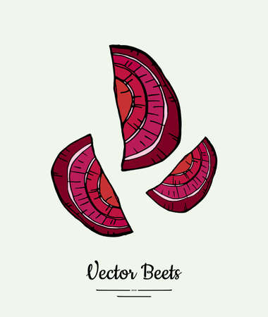 Beet slices vegetable vector isolate. Red sliced beetroot. Vegetables hand drawn illustration. Trendy food vegetarian sweet purple beetroot icon logo poster banner sketch. Vector illustration isolated