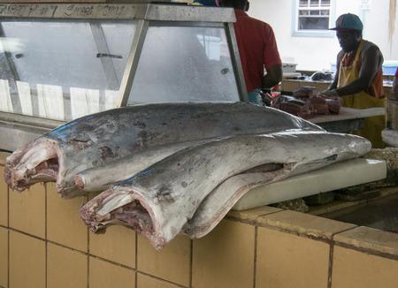 mago merlin: Bridgetown, Barbados, 21 de Diciembre el a�o 2015 - Merlin pescado, preparado y listo para la venta Editorial
