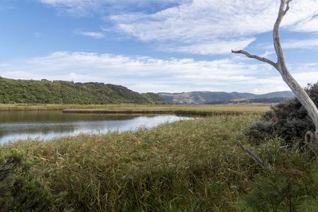 Aire River in Cape Otway National Park, Victoria, Australia Stock Photo