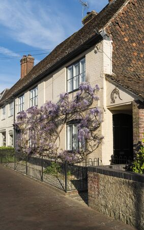 Purple wisteria in bloom, climbing up the wall of a house in the ancient village of Brasted, Kent, UK Фото со стока