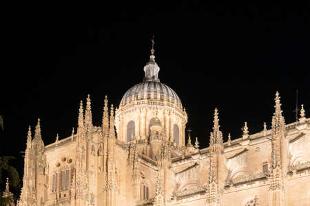 Salamanca cathedral lit up at night, Salamanca, Spain 免版税图像