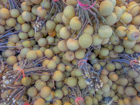full frames: Longan many full frames look good enough to eat. Stock Photo