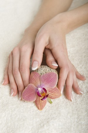 Beautiful hands with perfect french manicure  photo