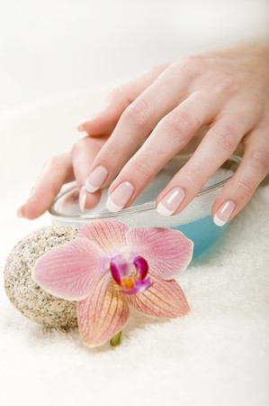 Beautiful hands with perfect french manicure and orchid Stock Photo - 7609983