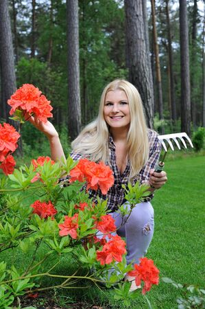 Pretty gardener woman with red flower bush and gardening tools outdoors photo