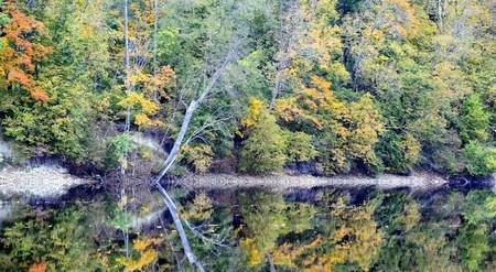 Beautiful autumn nature landscape near river Stock Photo - 8009892
