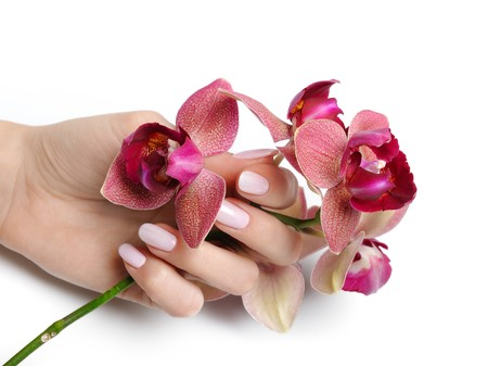 manicured hands: Beautiful hand with perfect nail pink manicure and purple orchid flower. isolated on white background