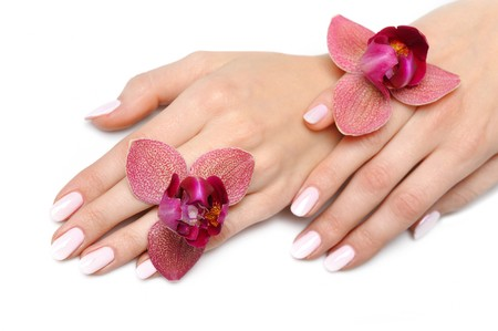 Beautiful hand with perfect nail pink manicure and purple orchid flower. isolated on white background