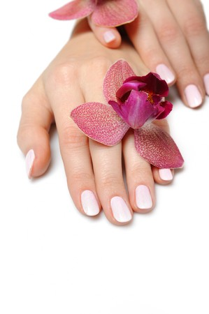 Beautiful hand with perfect nail pink manicure and purple orchid flower. isolated on white background photo