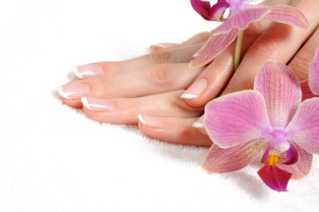 manicured: Beautiful hand with perfect nail french manicure and purple orchid flowers. isolated on white background