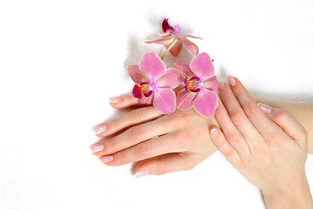 Beautiful hand with perfect nail french manicure and purple orchid flowers. isolated on white background photo