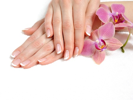 french woman: Beautiful hand with perfect nail french manicure and purple orchid flowers. isolated on white background
