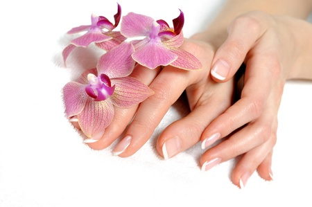 manicured hands: Beautiful hand with perfect nail french manicure and purple orchid flowers. isolated on white background