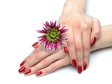 Beautiful hand with perfect nail red manicure and violet exotic flowers. isolated on white background