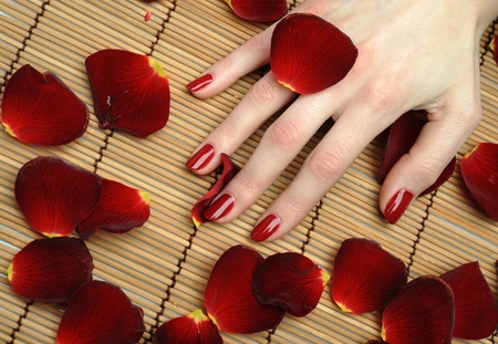 Beautiful hand with perfect nail red manicure and rose petals.