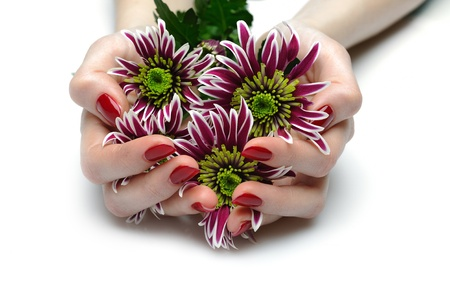 Beautiful hand with perfect nail red manicure and violet exotic flowers. isolated on white background Stock Photo - 9199872