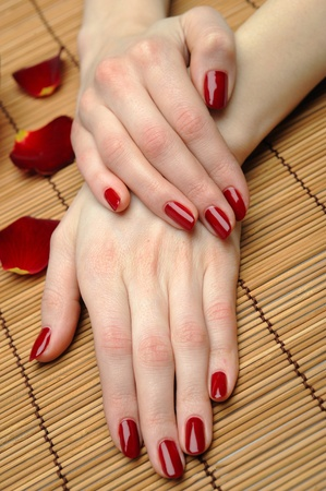Beautiful hand with perfect nail red manicure and rose petals. Stock Photo - 9277070