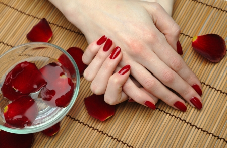 polish: Beautiful hand with perfect nail red manicure and rose petals.