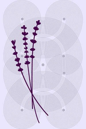 Purple sprigs of lavender on a background of intertwined round lines on a purple background