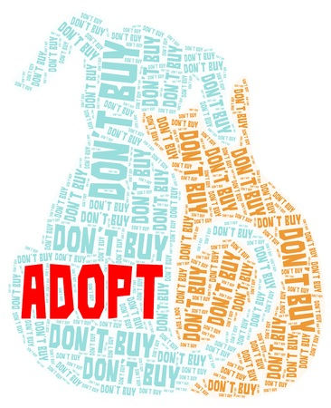Adopt cat and dog word cloud in blue and brown color with red adopt isolated on a white background