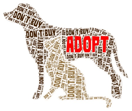 Adopt cat and dog word cloud in brown and red color isolated on a white background Illustration