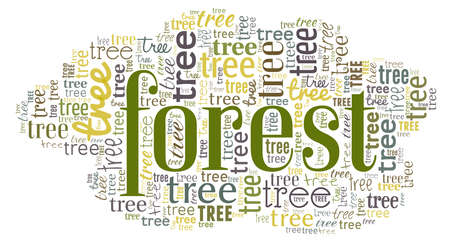 Can't see the forest for the trees - word cloud isolated on a white background.