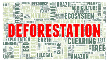 Deforestation vector illustration word cloud isolated on a white background.