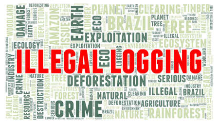Illegal logging vector illustrated word cloud isolated on a white background. Иллюстрация