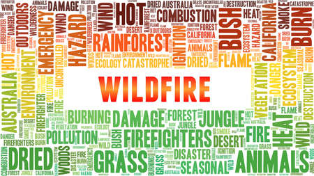 Wildfire vector illustration word cloud isolated on a white background.