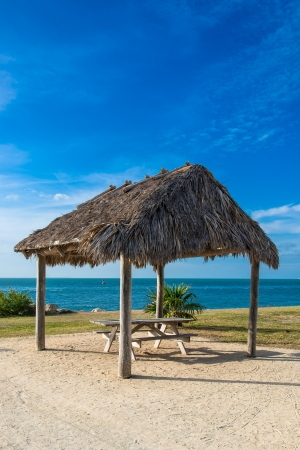 Thatch hut, typical tropical setting, blue sky, aqua water Stock Photo