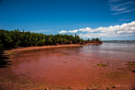 Red soil beach on bright day Stock Photo - 17572673