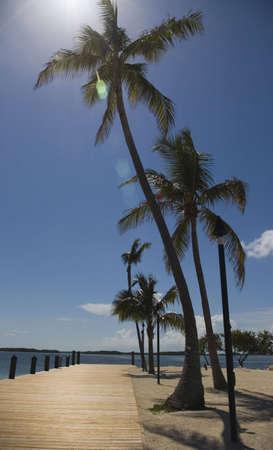 Florida Keys - Islandmorada Palms photo