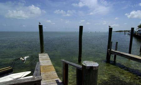 tiki bar: Florida Keys holiday isle dock with bird on pole