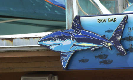 tiki bar: Florida Keys holiday isle Raw Bar Shark