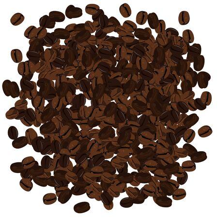 turkish dessert: Realistic illustration of coffee beans. Illustration