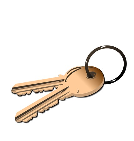metal doors: Realistic illustration the golden keys isolated of white background
