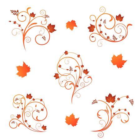 orange swirl: Set autumn floral design elements.  Illustration
