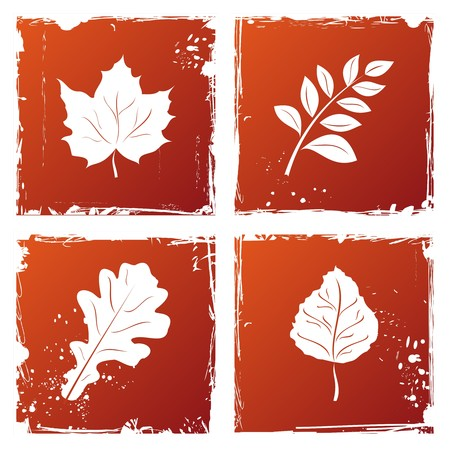 Set of grunge autumn leaves.  Vector