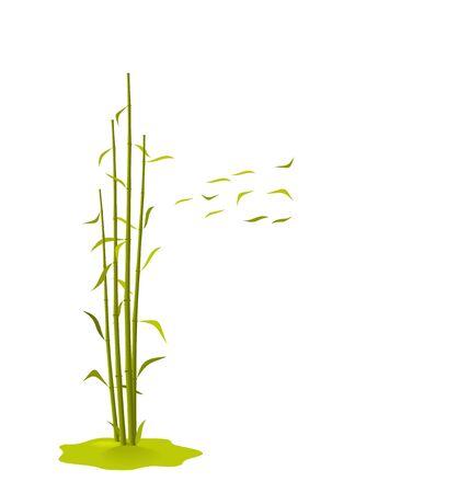 breaks: La ilustraci�n un viento rompe hojas de bamb�, aislados en un fondo blanco