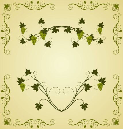 Illustration the grape twig ornate for design labels Vector