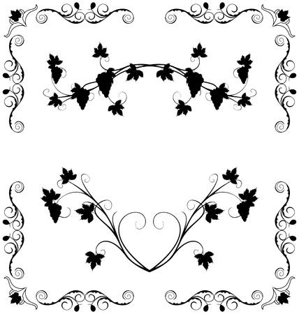 Ilustración de la uva ramita ornamentado para etiquetas de diseño Ilustración de vector