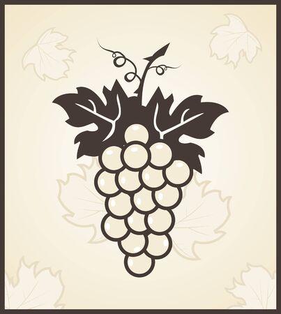 leaf grape: Grabado retro ilustraci�n de vid - vector