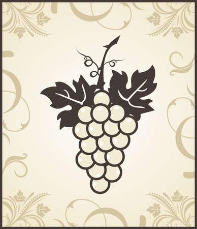 Illustration retro engraving of grapevine - vector illustration