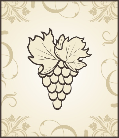 Illustration retro engraving of grapevine  illustration