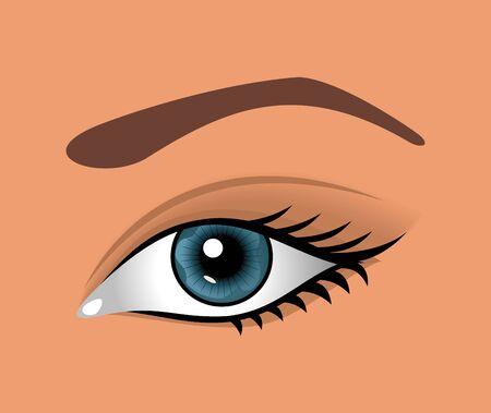 close up eye: Illustrazione da vicino l'occhio isolato - vettore